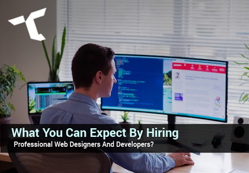 What-You-Can-Expect-By-Hiring-Professional-Web-Designers-And-Developers?